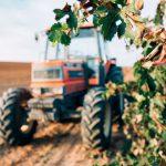 La desbrozadora para tractor más recomendable para el olivo